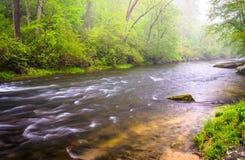 在火药河的小瀑布在Prettyboy水库附近在Balt 免版税图库摄影