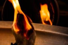 在火设置的羊毛咧嘴用一个剧烈的方式 免版税图库摄影