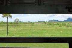在火车窗口的选择聚焦有被弄脏的行动美好的自然风景的 浅深度的域 库存照片