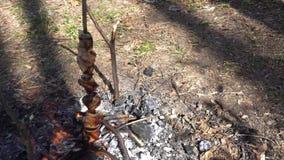 在火,美好的构成的烤肉串 股票录像