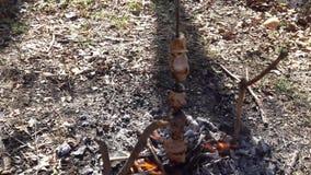 在火,美好的构成的烤肉串 影视素材