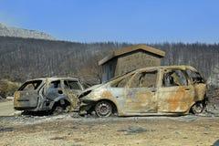 在火以后的天 免版税库存照片