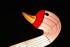 在灯会的中国鸟 免版税库存照片