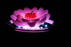 在灯的桃红色蜡烛 库存图片