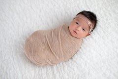 在灰棕色包裹的女婴包扎 免版税库存照片