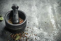 在灰浆的胡椒与杵 免版税库存图片