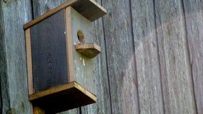 在灰色墙壁上的鸟笼 免版税库存照片