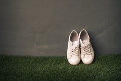 在灰色墙壁静物画葡萄酒的运动鞋鞋子 库存图片