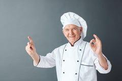 在灰色指向隔绝的资深厨师演播室身分陈列ok标志微笑的正面 库存图片