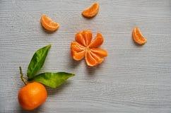 在灰色木板的三个蜜桔橙色切片有赠送阅本空间的 与绿色叶子的新鲜的未加工的橘子 库存照片