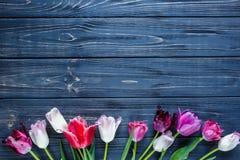 在灰色木桌上的五颜六色的美丽的桃红色紫罗兰色郁金香 华伦泰,春天背景 花卉嘲笑 copyspace 库存图片