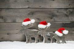戴在灰色木背景的三个麋圣诞老人帽子 免版税库存照片