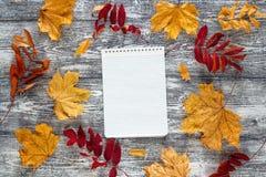 在灰色桌上的秋叶之前围拢的空白的笔记本 Sp 免版税库存图片