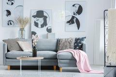 在灰色沙发的桃红色毯子 免版税库存照片