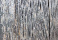 在灰色的木地板背景 库存照片