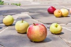 在灰色石头轨道的苹果  免版税图库摄影
