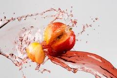 在灰色背景和红色汁液飞溅隔绝的苹果计算机 免版税库存图片