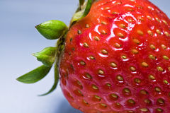在灰色背景宏指令关闭的美丽的新鲜的红色草莓纹理 免版税库存图片