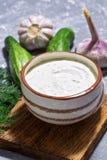 在灰色背景的希腊传统调味汁tzatziki,黄瓜,大蒜,莳萝 库存照片