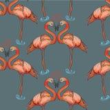 在灰色背景的无缝的样式桃红色火鸟 皇族释放例证