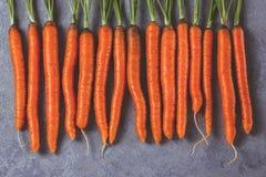 在灰色背景的未加工的整个新鲜的红萝卜 免版税库存照片