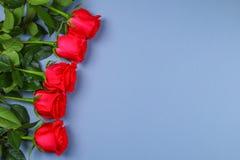在灰色背景的桃红色玫瑰,在淡色纸 复制文本的空间 模板母亲节3月8日, 库存照片