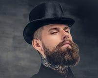 在灰色背景的残酷有胡子的男性 免版税图库摄影