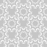 在灰色背景的白色花卉无缝的样式 库存照片