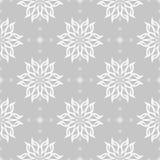 在灰色背景的白色花卉无缝的样式 库存图片