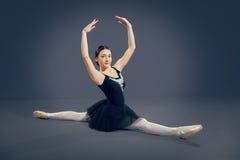 在灰色背景的美丽的女性跳芭蕾舞者 库存图片