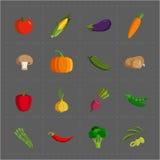 在灰色背景设置的五颜六色的菜象 库存照片