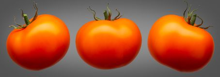 在灰色背景隔绝的小组红色蕃茄 免版税库存图片