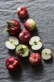 在灰色背景,顶视图的新鲜的成熟红色苹果 平的位置 免版税库存图片