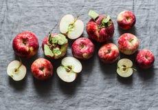 在灰色背景,顶视图的新鲜的成熟红色苹果 平的位置 库存照片