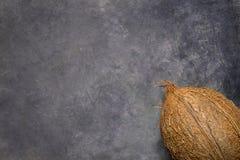 在灰色脏的石背景的整个成熟椰子 壁角位置 海报飞行物的模板 热带假期健康温泉 免版税库存图片