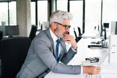 在灰色衣服的成熟商人在办公室 免版税库存图片