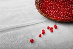 在灰色袋子背景的五颜六色的红浆果 在一个棕色篮子的有机,新鲜和土气红浆果 素食成份 免版税库存图片