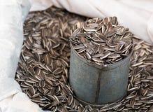 在灰色锡罐的向日葵种子 免版税图库摄影
