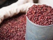 在灰色锡罐的小红豆 免版税库存照片