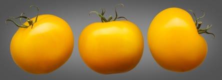 在灰色隔绝的小组黄色蕃茄 免版税库存照片