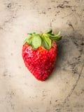 在灰色织地不很细背景的大成熟草莓 免版税图库摄影