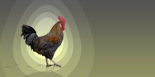 在灰色黄色背景的多角形雄鸡来克亨鸡公鸡 库存照片