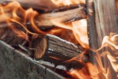 在灼烧的木头的火焰在壁炉 库存图片