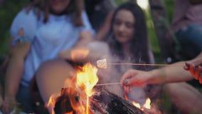 在灼烧的篝火附近的朋友在森林 股票录像