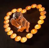 在灼烧的蜡烛一个心形的框架的天使  免版税图库摄影