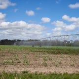 在炎热的领域的方形的格式灌溉设备 免版税库存照片