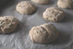 在烘烤前的面包小圆面包 库存图片