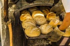 在烘烤盘子的新近地被烘烤的面包在与木柴的一个烤箱 库存照片