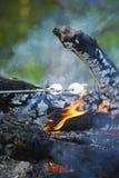 在烤在开火的钢标尺的Marshmellows 免版税库存照片