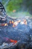 在烤在开火的钢标尺的Marshmellows 免版税库存图片